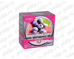 Ароматизатор Eikosha Air Spencer | Аромат Wild Berry - Дикая ягода A-44